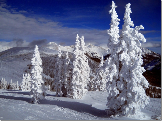 photoshare Snowy Wonders Sawatch Range, Monarch CO cplanet3