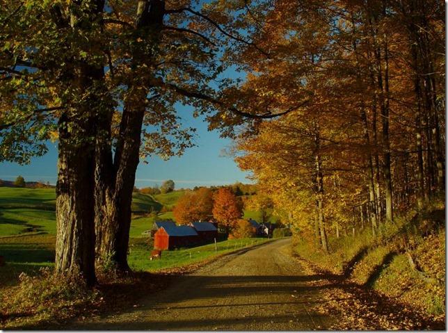 PS II Country road foliage woodstock 4 dot blogspot dot com